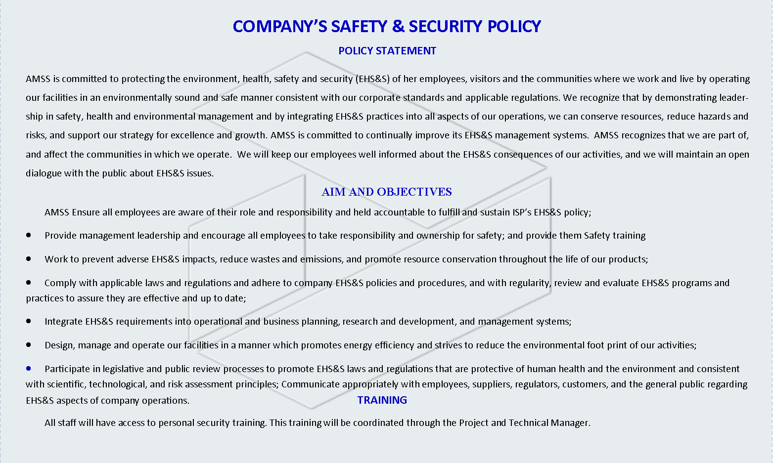 COMPANY SAFETY & SECURITY POLICY